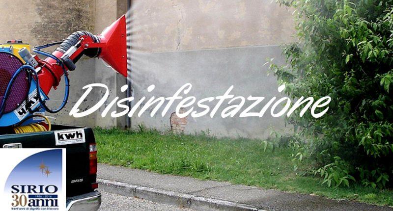 Disinfestazione Parma Disinfestazione insetti parma Disinfestazione zanzare Parma