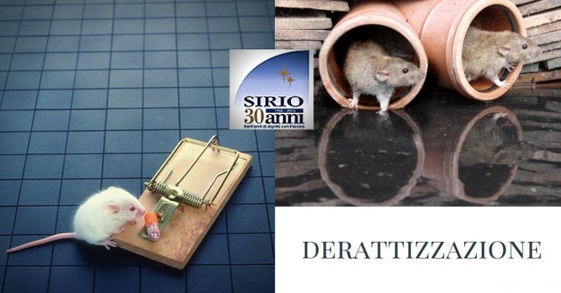 Derattizzazione Parma  Disinfestazione Parma Trattamenti di Derattizzazione Parma