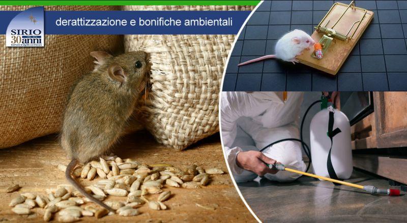 Cooperativa Sirio - offerta servizio derattizzazione topi e ratti parma - occasione derattizzazione e bonifiche ambientali parma