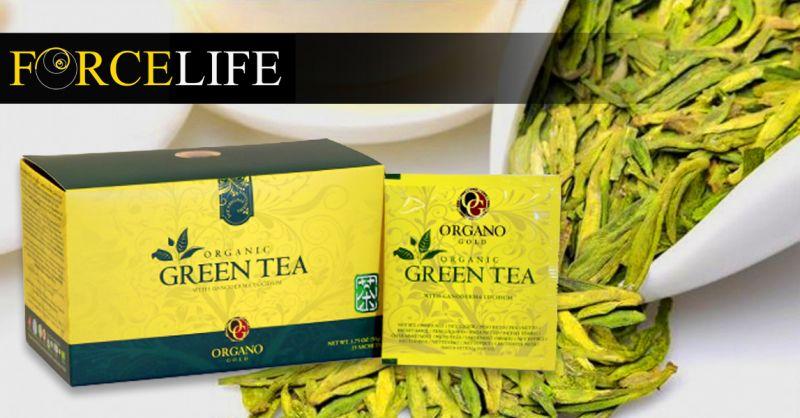 Offerta vendita Tè Verde Biologico - Occasione Tè Ganoderma lucidum organico