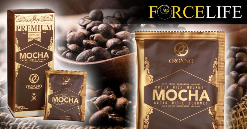 Offerta Vendita Caffè Mocha con Ganoderma - Occasione Organo Gourmet Caffè Mocha