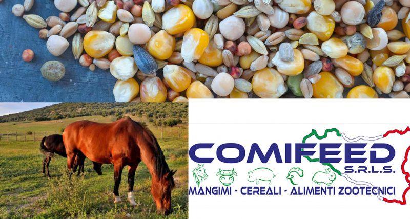 comifeed offerta mangimi - occasione alimenti animali da allevamento Ragusa
