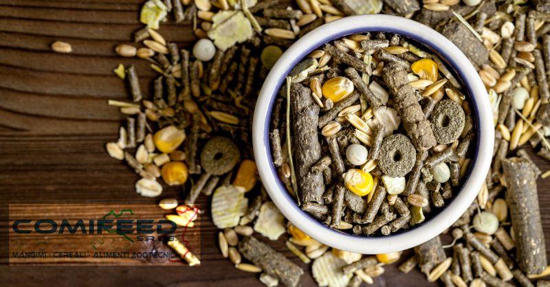 offerta vendita mangimi per animali Ragusa - occasione mangimi per allevamenti Ragusa