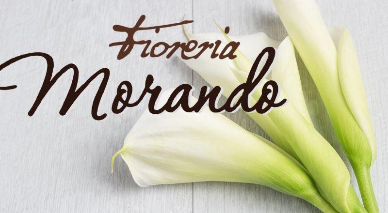 Morando offerta fiori e piante ornamentali - occasione addobbi floreali matrimoni Vittoria