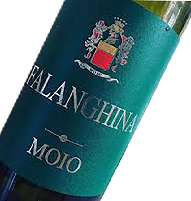 Vini Bianchi Falanghina Cantine Moio