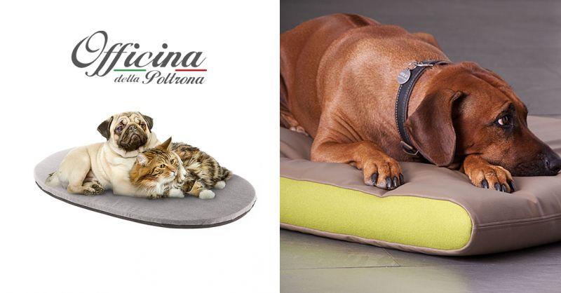 offerta cuscino per cane su misura chieti - occasione cuscino per gatto personalizzato chieti