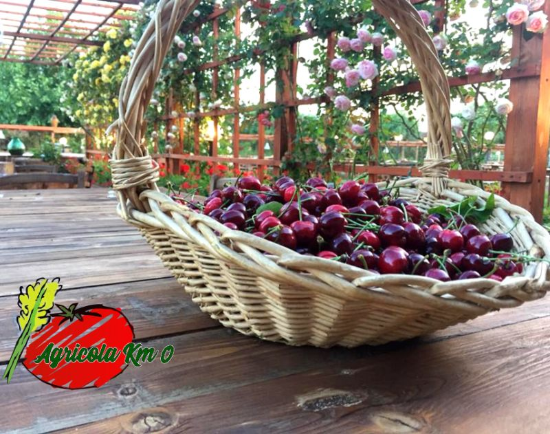 AZIENDA AGRICOLA KM ZERO offerta vendita diretta frutta verdura ?