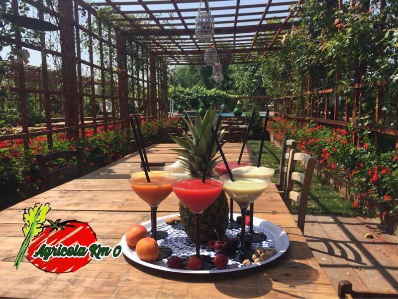 AZIENDA AGRICOLA KM ZERO offerta garden estivo - promozione posti a sedere all aperto giardino