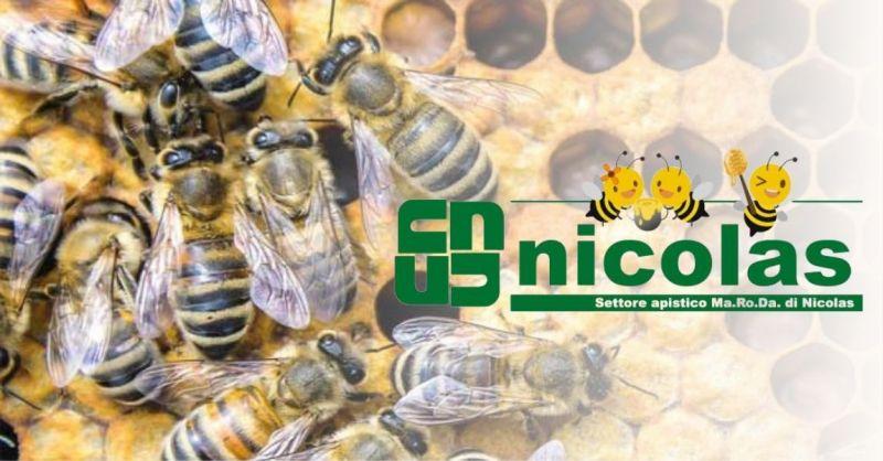 Nicolas srl - offre un service de ramassage et de fonte des nids d'abeilles en collaboration avec Cereria Valsusa