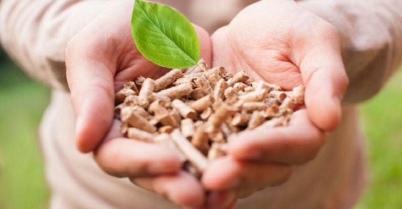 promozione vendita prestagionale pellet Novara - FORMENTI PELLET