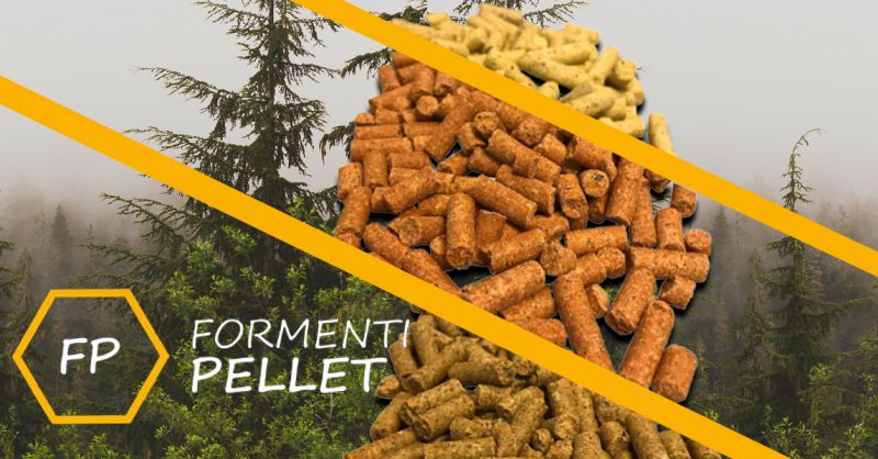 Offerta Vendita sacchetti di Pellet Pino - Occasione Consegna Pellet di Faggio