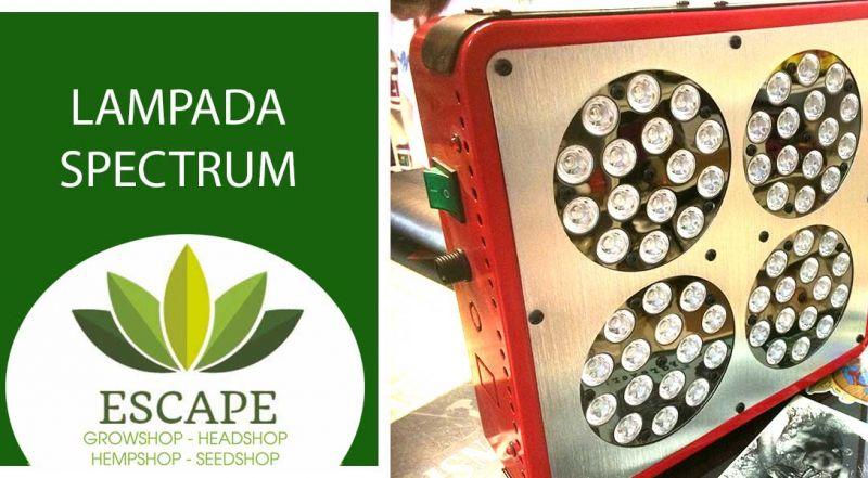Offerta lampada spectrum grow led per orticultura zona Aprilia