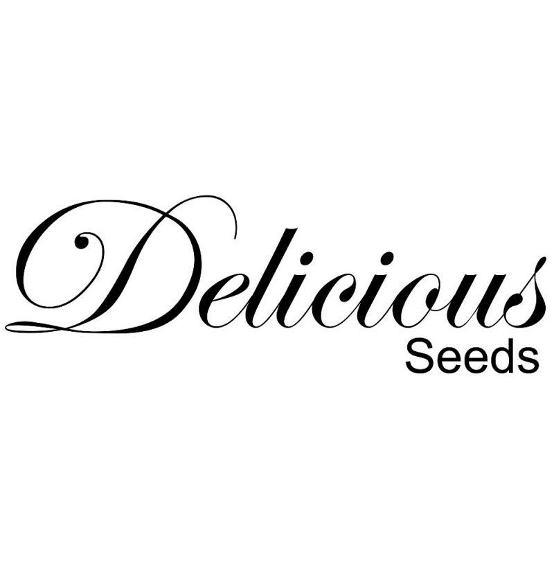 Escape Offerta semi da collezione Genzano