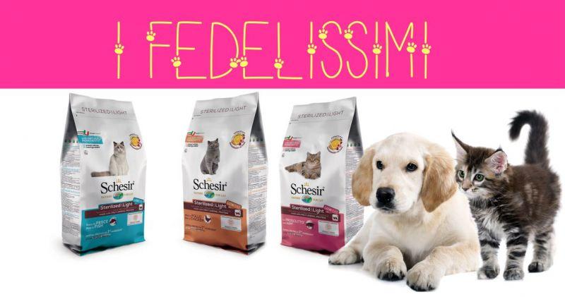 I FEDELISSIMI negozio animali - offerta alimenti naturali cani e gatti SCHESIR