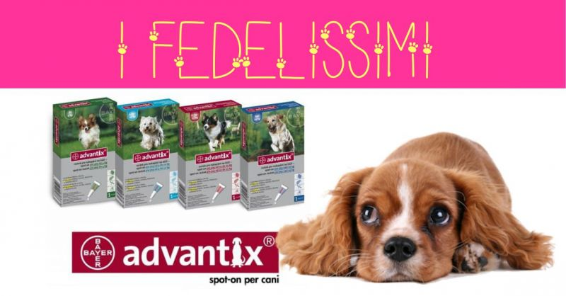 I Fedelissimi - offerta antiparassitari Advantix per cani protezione pappataci leishmaniosi
