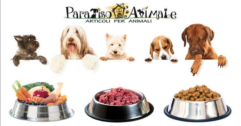 PARADISO ANIMALE Offerta Crocchette cibo umido e secco per cani e gatti Roma