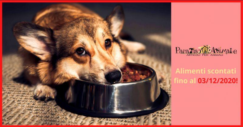 PARADISO ANIMALE - Offerta vendita alimenti per animali domestici in sconto roma marconi