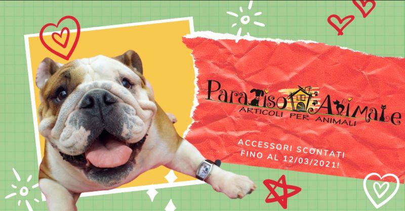 PARADISO ANIMALE - offerta negozio di accessori per animali roma marconi