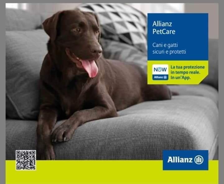 offerta assicurazione animali domestici benevento - occasione polizze assicurative cani allianz