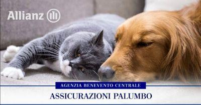 offerta assicurazione animali domestici occasione migliore polizza cane gatto benevento