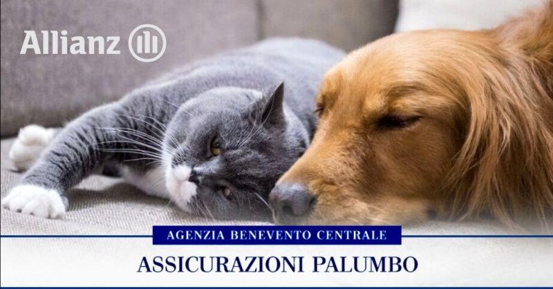 Offerta assicurazione animali domestici - occasione migliore polizza cane gatto Benevento