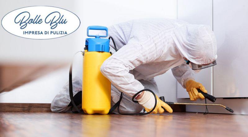 Offerta servizio professionale di derattizzazione  – Promozione derattizzazione  topi, ratti e roditori
