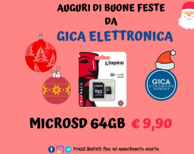 offerta micro sd 64gb classe 10 kingston trani