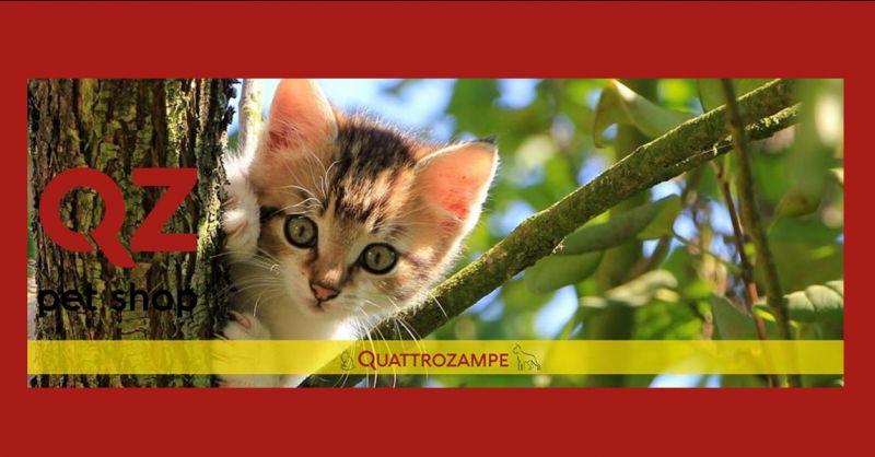offerta vendita prodotti per animali catania - occasione vendita cibo per animali catania