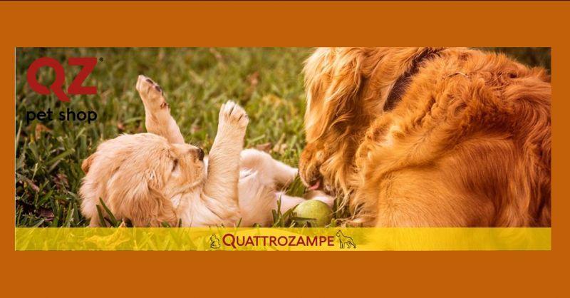 offerta vendita online articoli per animali - promozione vendita on line alimenti per animali