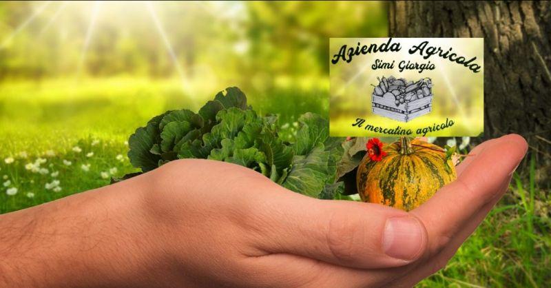 occasione vendita diretta frutta e ortaggi Lucca - vendita km 0 prodotti agricoli Lucca