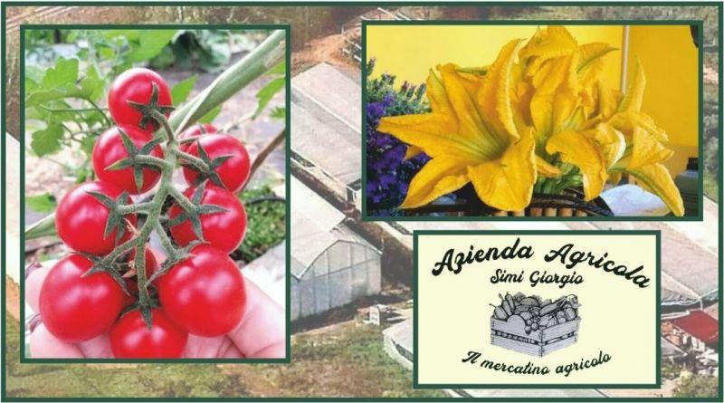 occasione vendita prodotti ortofrutticoli Toscana - promozione prodotti biologici in vendita Lucca