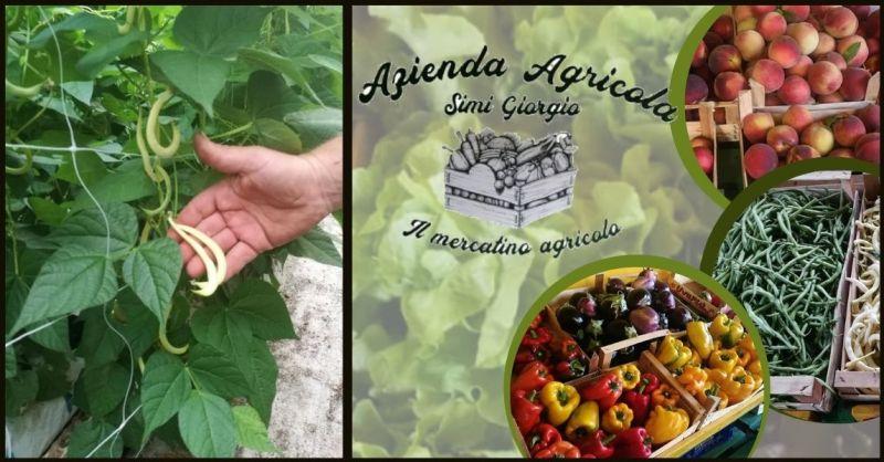 AZIENDA AGRICOLA SIMI - occasione vendita all'ingrosso di frutta e verdura in Toscana
