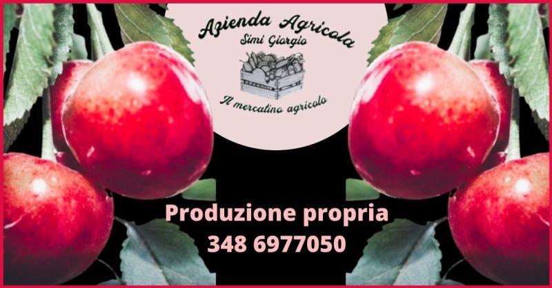 offerta vendita prodotti agricoli produzione propria Toscana - AZIENDA AGRICOLA SIMI