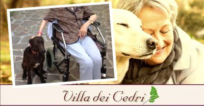offerta servizio pet therapy per anziani occasione struttura con attivita per anziani bologna