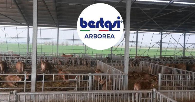 BERTASI - offerta cancelli e recinzioni per stalle paddock e corral allevamento  bovini