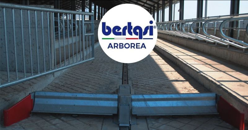 BERTASI - offerta raschiatori oleodinamici in acciaio zincato a caldo pulizia corsie stalle