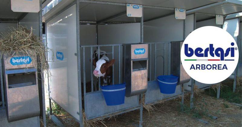 BERTASI - offerta box unicellulare o multiplo acciaio zincato a caldo antiurto svezzamento vitelli