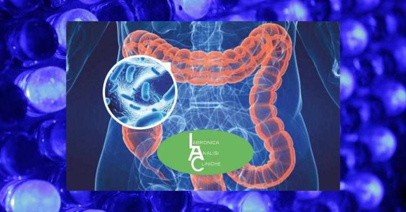 Test del Microbiota Intestinale - Esame del Microbiota per disturbo Gastrointestinale