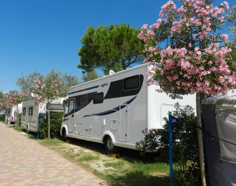 Camping Pino Mare, Angebote für den Sommerurlaub
