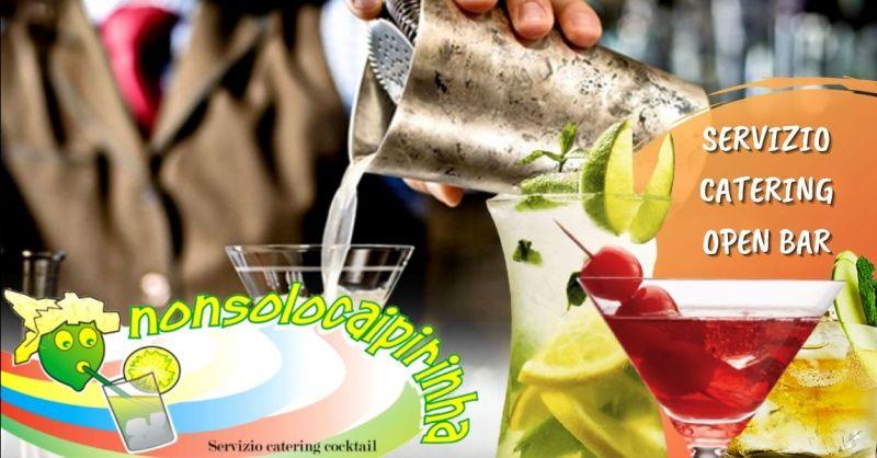 Occasione servizio cocktail catering provincia Verona - Offerta bartender a domicilio Verona