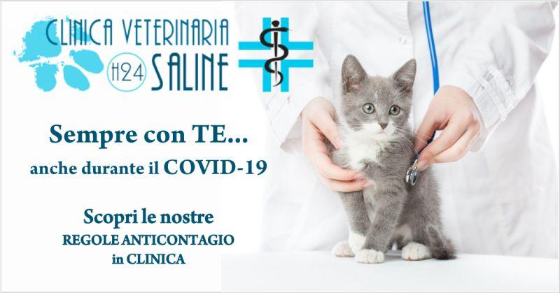 clinica saline offerta ambulatorio veterinario - occasione clinica per animali pescara