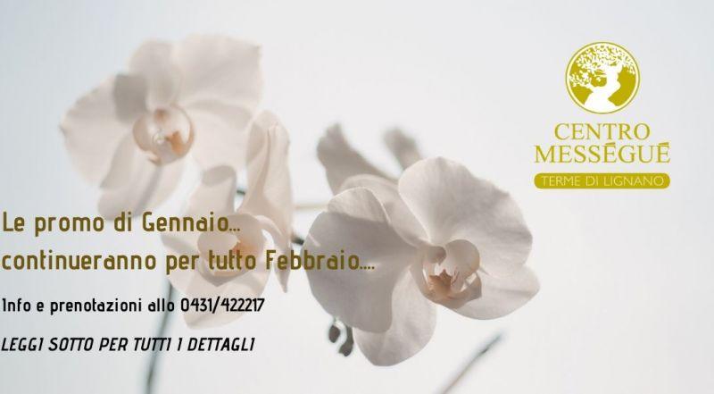 Occasione promozione trattamenti viso e corpo a Udine Pordenone - Vendita massaggi in promozione a Udine e Pordenone
