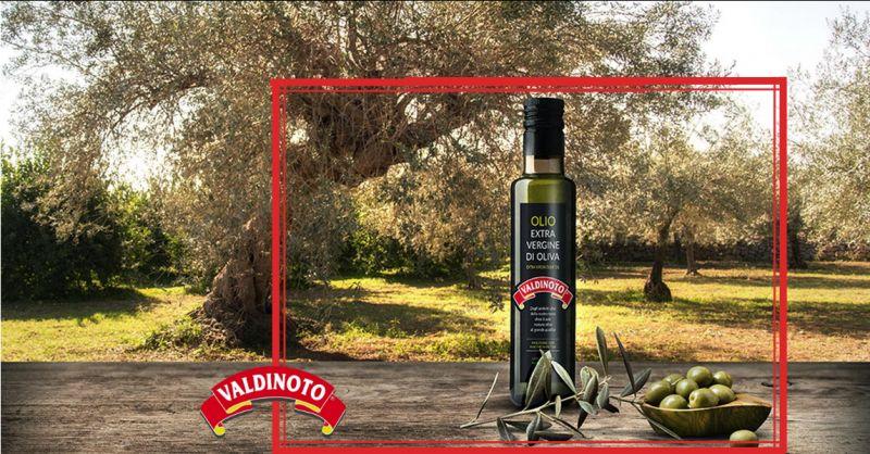 offerta oleificio ragusa - occasione produzione e vendita olio extravergine di oliva siracusa
