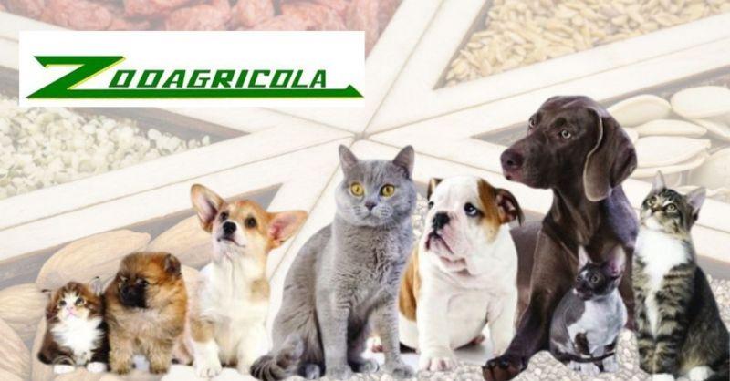 offerta vendita prodotti per agricoltura e attrezzi agrotecnica - ZOOAGRICOLA