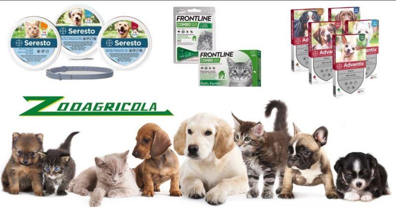 offerta prodotti antiparassitari per cani e gatti - occasione prodotti contro pulci e zecche