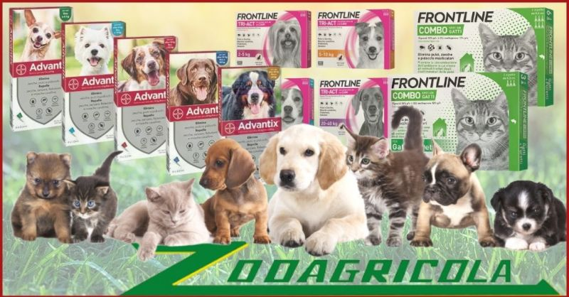 promozione antiparassitari per cani e gatti - offerta prodotti Frontline e Advantix