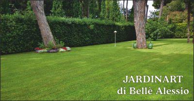 jardinart offerta giardini occasione giardinaggio massa carrara