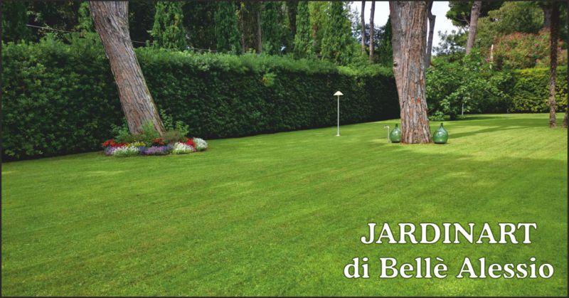 jardinart offerta giardini - occasione giardinaggio massa carrara