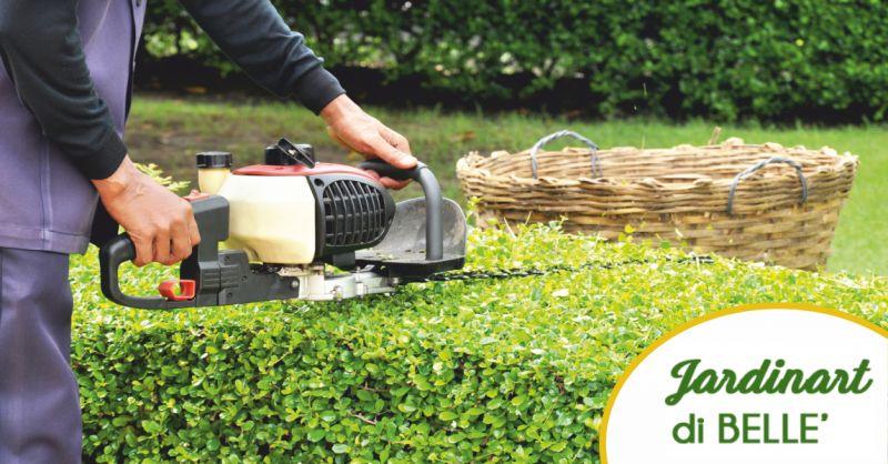jardinart offerta giardinieri per la cura del verde - occasione cura dei parchi massa carrara