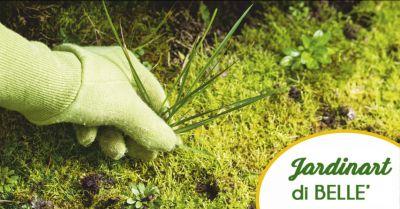 jardinart offerta giardinieri professionisti occasione cura del verde massa carrara